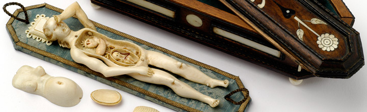 Anatomisches Lehrmodell einer schwangeren Frau, Stephan Zick, Nürnberg, um 1680 © Kunstkammer Georg Laue, München