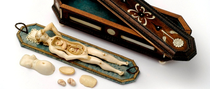 Anatomisches Lehrmodell einer schwangeren Frau, Stephan Zick Nürnberg um 1680; © Kunstkammer Georg Laue, München_720x306